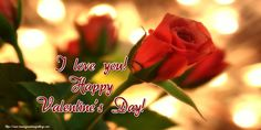 I love you! Valentines Day Ecards, Valentines Day Greetings, Happy Valentines Day, Valentine's Day Greeting Cards, I Love You, My Love, Flowers, Te Amo, Je T'aime