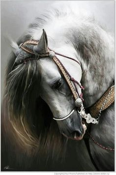 Awesome #horse