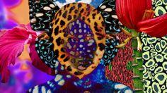 Kenzo - Electric Jungle. Art Direction: Mat Maitland. Direction: Smith & Read / Mat Maitland. Animation: Natalia Stuyk. Production: Alastair...