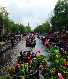 kingsday holland