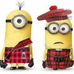 Scottish Minions