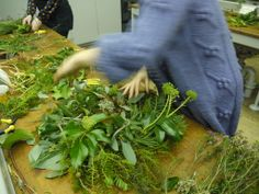 Christmas wreath making.  http://www.belhavenfruitfarm.co.uk/the-store.aspx