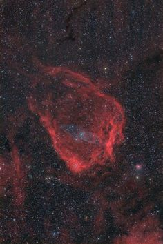 The Flying Bat and Squid Nebulae in HaOIIIRGB (the Squid Nebula is in the very center of the image). Image Credit: Scott Rosen