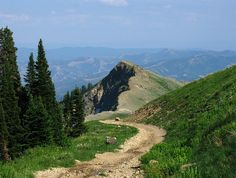 Wasatch Mountains | Wasatch Range, UT          I'd like to go for a walk down this path. I wonder what is round the bend?