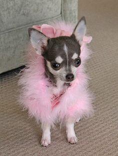 Aww pretty little girl - Consuela Watkins :)