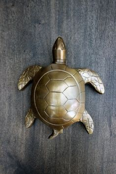 1000 images about surf shack on pinterest hooks door knockers and whale tail - Turtle door knocker ...