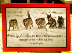 NC State Holiday Decorations (with images, tweets) · ncstate · Storify ncstate wolfpack