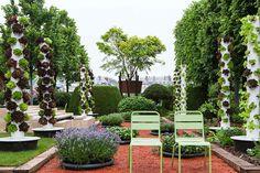 Jardins, Jardin aux tuileries 2016, création de Olivier Riols