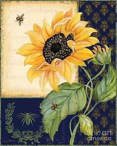 Sunflower Melody-B by Jean Plout