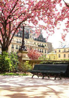 Enjoy springtime in Paris