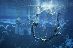Weeki Wachi Florida underwater mermaid show