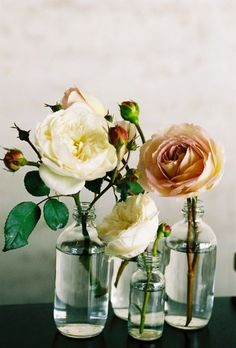 roses flowers and bouquets
