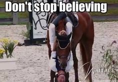 Dont stop believin!