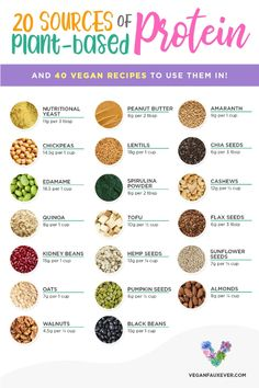 The ultimate cheat sheet to vegan protein sources. 20 high-protein vegan foods PLUS 40 recipes so you can learn how to cook with vegan protein! Plus, these vegan protein sources are cheap, accessible, and easy to cook. Proteine Vegan, Vegan Foods, Diet Foods, What Foods Are Vegan, Vegan Food List, Vegan Junk Food, Vegan Dishes, Paleo Diet, High Protein Vegetarian Recipes