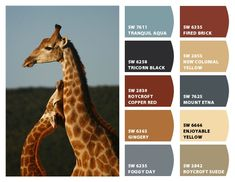 """""""Giraffe"""" Color Palette Inspiration for exterior craftsman home paint color scheme, stone accent colors, shingle choice, and landscape plantings. Chip It! by Sherwin-Williams – Home"""