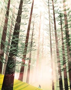 Forest by ~ducksofrubber