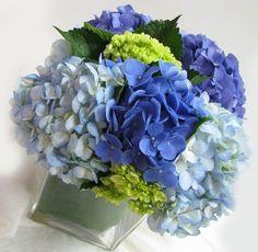 Blue Wedding Flowers Blues on WeddingWire - Shades of blue and green hydrangea Hydrangea Shade, Blue Hydrangea Wedding, Peonies And Hydrangeas, Blue Peonies, Green Hydrangea, Diy Wedding Flowers, Green Wedding, Blue Flowers, Peonies Centerpiece