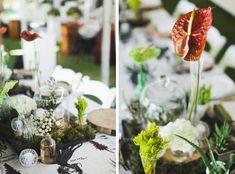 Botanical Olive Farm Wedding by Justin Davis Photography {Rebecca & Craig} Farm Wedding, Events, Table Decorations, Bride, Photography, Wedding Bride, Photograph, Bridal, Fotografie