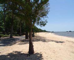 20 Things To Do Beautiful Fairhope Has Its Own Beach School Looks Orange