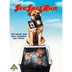 http://ift.tt/2dNUwca | See Spot Run DVD | #Movies #film #trailers #blu-ray #dvd #tv #Comedy #Action #Adventure #Classics online movies watch movies  tv shows Science Fiction Kids & Family Mystery Thrillers #Romance film review movie reviews movies reviews