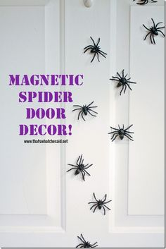 It's a spider attack!  The magnetic fake kind...the only kind allowed in my house!