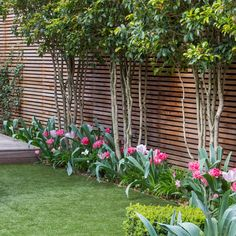 Clapham - Garden Club London - Another! Small Front Gardens, Small Courtyard Gardens, Back Gardens, Outdoor Gardens, Garden Deco, Garden Club, Back Garden Design, Baumgarten, Garden Privacy