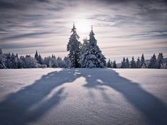 Casting Shadows by andywon, via Flickr