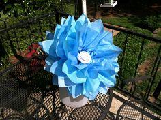 Large tissue paper flower