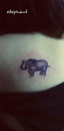 cute lifelike baby elephant tattoo on the back #elephant #tattoo