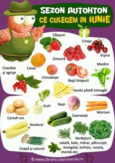 Cold Vegetable Salads, Educational Games, Kale, Green Beans, Good Food, Parenting, Dinner, Vegetables, School