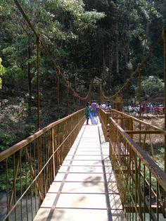 Viewing bridge, Abby falls, Madikeri