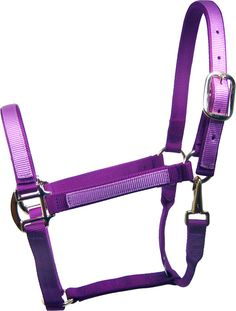 purple horse saddles - Google Search
