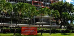 Nace alianza para desarrollar vacuna contra el dengue...