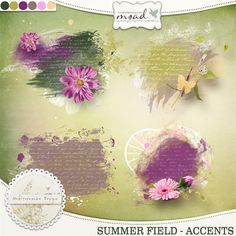 Summer field (Accents)