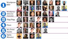 Best Wordpress Plugins 2013: 53 Pros Share Amazing Plugins to Inspire You