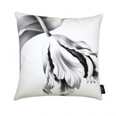 Twisting Tulips White on Cotton - Floral Pillows - by Ellie Cashman Design