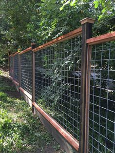 garden fence 46 simple and cheap privacy fence ideas Hog Wire Fence, Deer Fence, Farm Fence, Wire Fence Panels, Front Yard Fence, Cattle Panel Fence, Chicken Wire Fence, Welded Wire Fence, Diy Backyard Fence