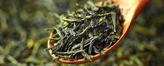 green tea mosquito