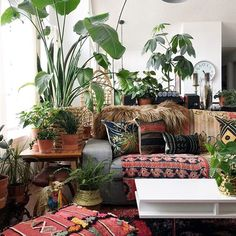 kantha quilts, moroccan floor poufs, and rugs!