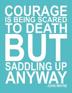 This quote is on a poster in my barns tack room!