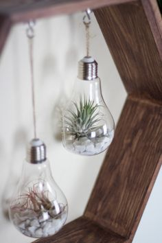 Zuhause DIY furniture - honeycomb shelf very easy to make! How Does Your Garden Grow: Tips For Hirin Cedar Wood Fence, Wood Fences, Light Bulb Art, Honey And Co, Honeycomb Shelves, Kindergarten Art Projects, Hippy Room, Diy Tumblr, House Of Beauty