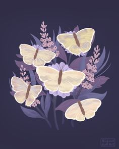 Alyssa Scott is an Austin based artist who works in animation, motion graphics, illustration and pattern design. Art And Illustration, Butterfly Illustration, Animal Illustrations, Illustrations Posters, Gifs Cute, Alyssa Scott, Butterfly Gif, Butterflies, Aesthetic Gif