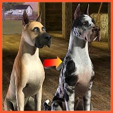 An improved great dane for your Sims 3 pets folder.