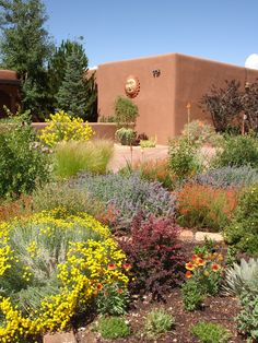 A desert  garden. I LOVE the colorful desert.
