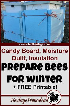 Bees | Winter Bees | Winter Bee Food | Do you have really cold, wet winters? Then you should consider making a candy board, moisture quilt and wrapping your hive with insulation. This how-to article with detailed pictures will show you exactly how to make them so you can help your bees through winter. Bees | Winterizing a bee hive | How to bees