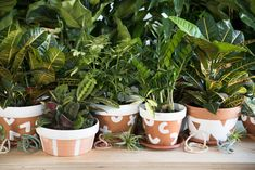 DIY Macetero terracotta | Designlovefest