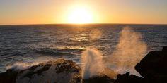 ワイキキトロリーで「初日の出ツアー」に行ってみよう! New Year First Sunrise Tour by Waikiki Trolley #Hawaii #ハワイ Waikiki Trolley ワイキキトロリー  http://www.poohkohawaii.com/travel_tour/enoa_sunrise.html