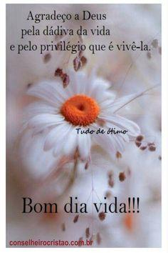 Seja grato a Deus pela vida todos os dias! Happy Day, Good Morning, Lily, Messages, Words, Snoopy, Humor, Cute Good Morning Messages, Good Morning Photos