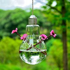 CosCosX Original Bulb Shaped Hanging Glass Fish Aquarium Flower Vase for Home Wedding Decoration2 small hole >>> Want to know more, click on the image. (This is an affiliate link and I receive a commission for the sales)