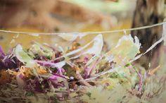 Salada de repolho com maionese de tofu - Ingredientes: 2 xícaras de repolho roxo picado, 1/3 xícara de cenoura ralada, ¼ de cebola cortada em julienne, ½ talo de aipo picado com as folhas, 2 colheres de sopa de uva passa ou goji berry, ½ xícara de salsinha picada. | Ingredientes da maionese de tofu: 200 gramas de tofu, 1 limão, 4 colheres de sopa de azeite, 1 colher de chá de sal marinho, 1 dente de alho pequeno
